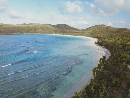 Best Puerto Rico Tour | Kayaking Puerto Rico
