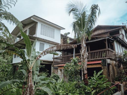 Rainforest Inn B&B | Hidden Gem in Puerto Rico