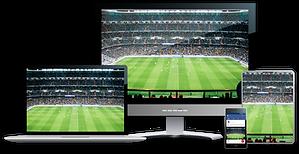 Multi-display-image from NewTek.png