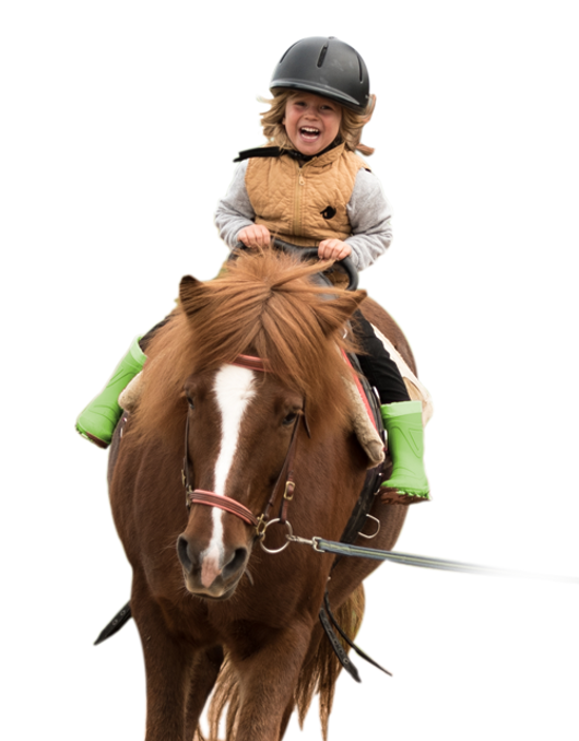 Pferd und Du