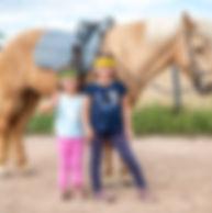 Workshop - Pferdefans