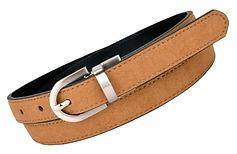 truth belts star reversible belt (2).jpg