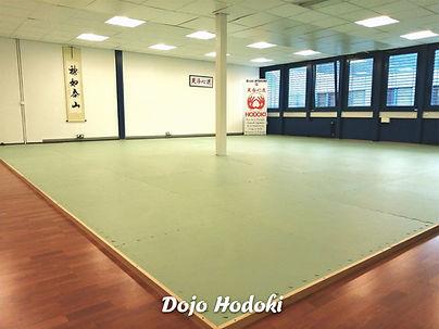 Dojo Hodoki