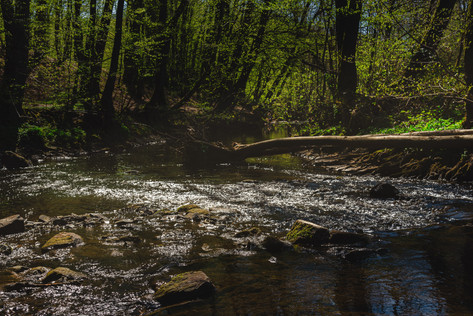Wahnbach Valley