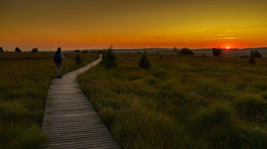 Sunrise | High Venn | Belgium