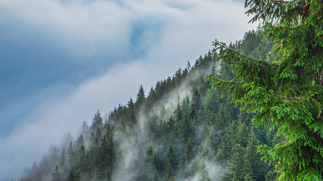 Climbing Clouds at Kloster Kogel
