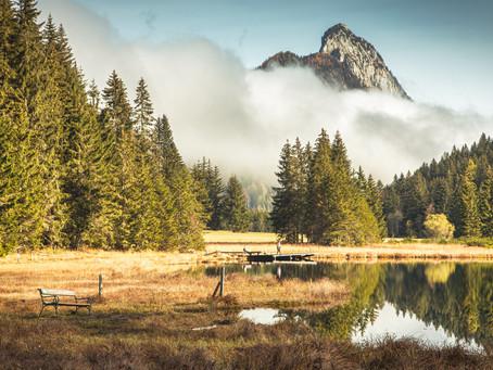 Lake Tour | Styria