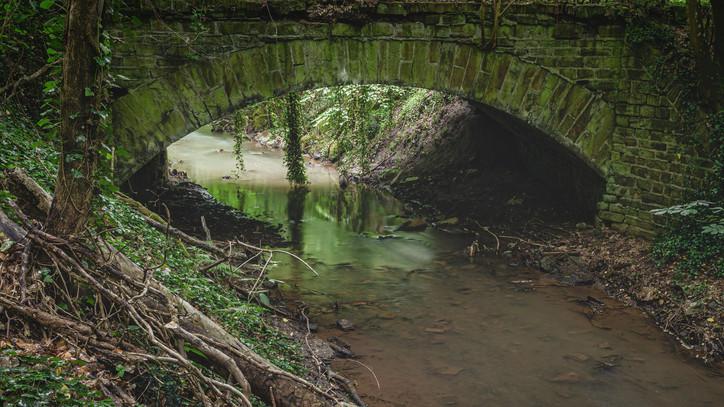 Bridge | Dream Path | Eifel