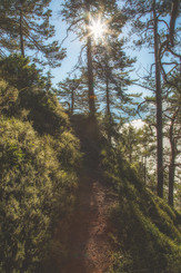 Path to summit
