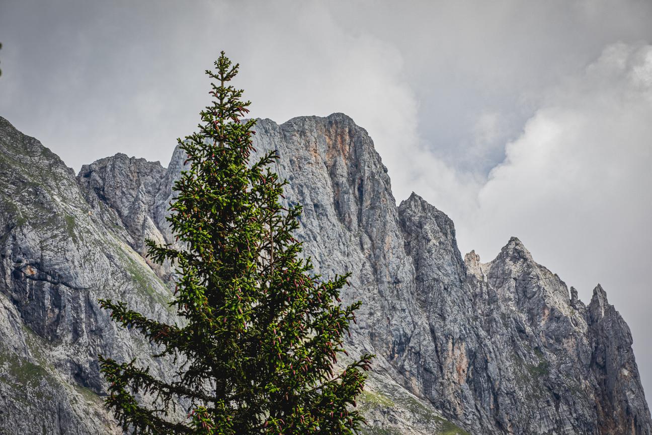 Mountain Reichenstein