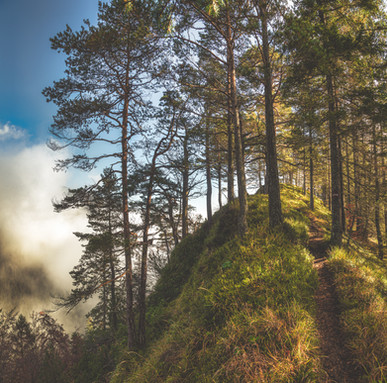 Path to summit of Mount Dörfelstein
