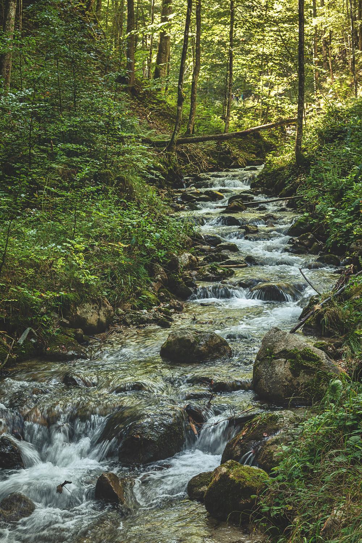 Fallbach   Dr. Vogelgesang Gorge   Upper Austria   HolgerOlivier Photography