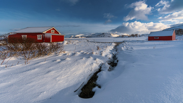 Red Cabins at Borgpollen