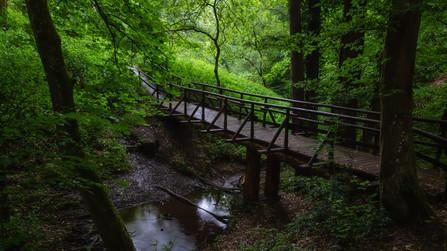 Bridge | Pönter Valley