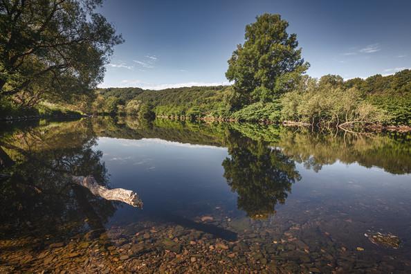River Sieg near Merten