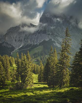 Mountain Kalbling in Morning Mood