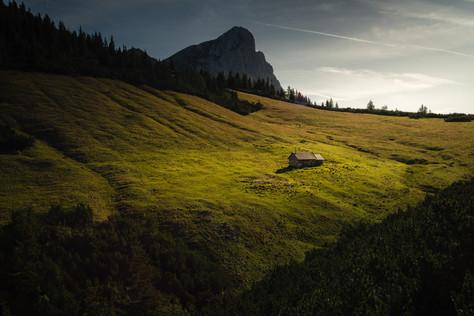 Scheiblegger high alp with Mountain Kalbling
