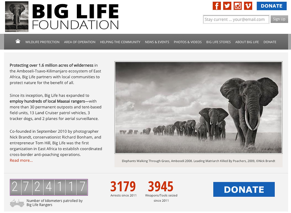 BIG LIFE FOUNDATION  | NICK BRANDT