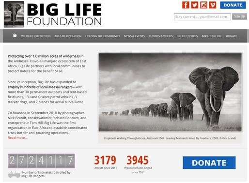 Elephants ...