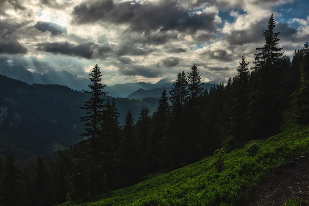 Lahngang | Woodlands