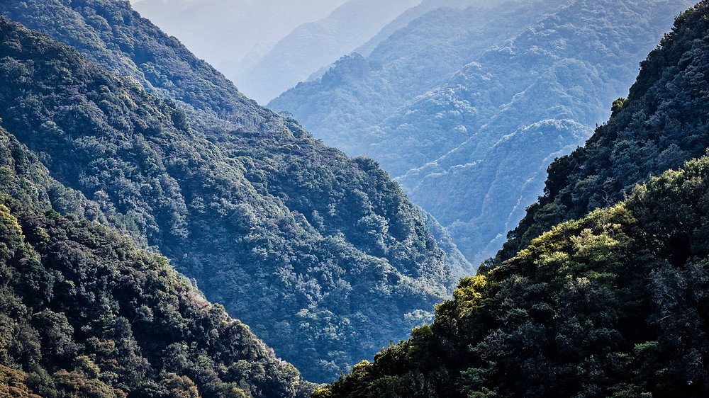 La Gomera | Facts | HolgerOlivier Photography