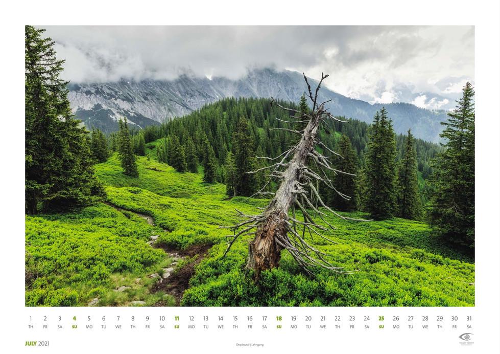 Calendar 2021 | June