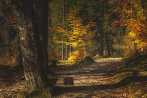 Circular trail at Öden Lake