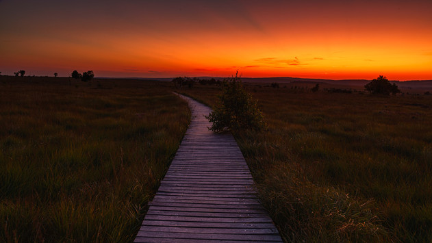 Sunrise   High Venn   Belgium