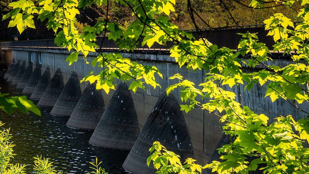 Olef Dam | Eifel National Park | HolgerOlivier Landscape & Travel Photography