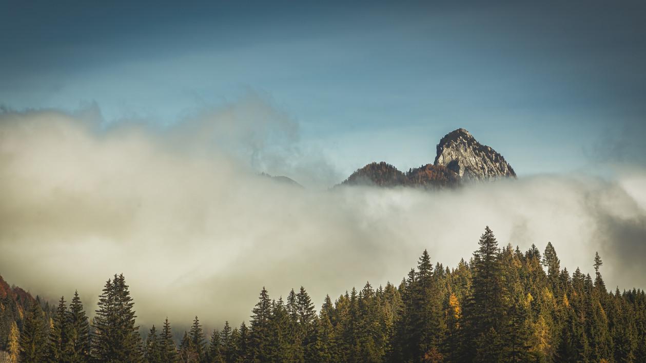 Morning Fog at Spechten Lake