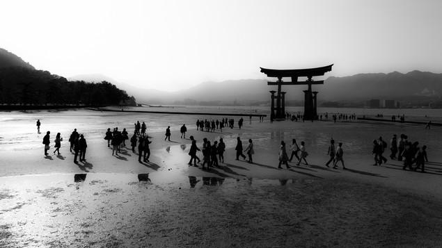 Japan | Torii