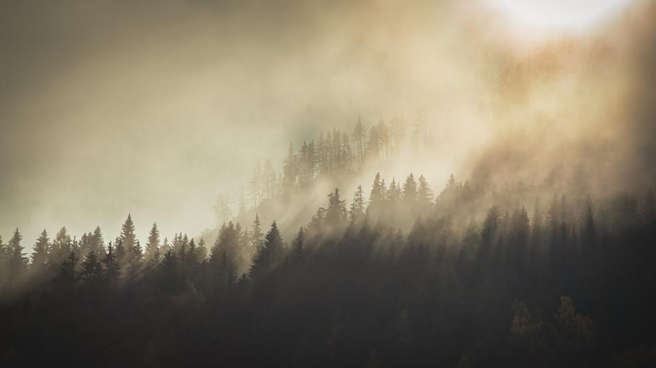 Gound Fog at Spechten Lake