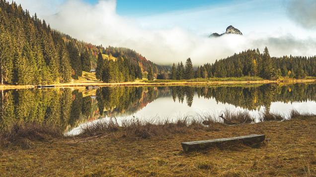 Bench at Spechten Lake