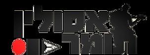 Tomer Asulin Logo