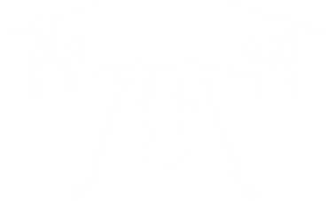 DRONE30.png