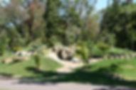 buckeye forest.jpg