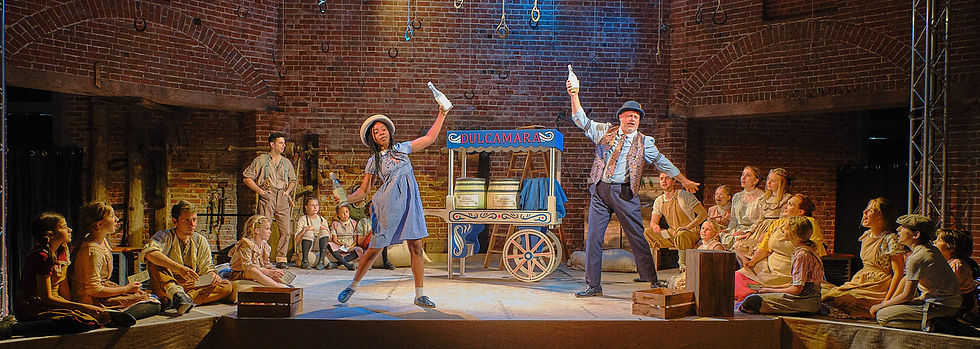The Elixir of Love at the Norfolk Into Opera Festival