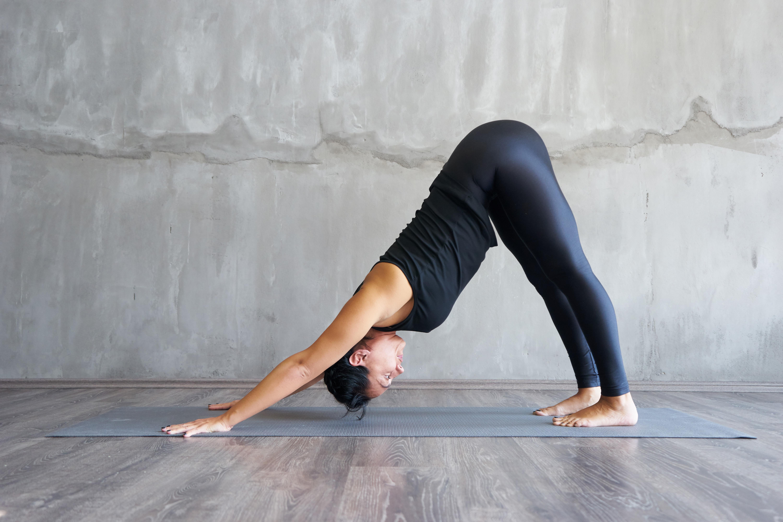 All Levels Yoga