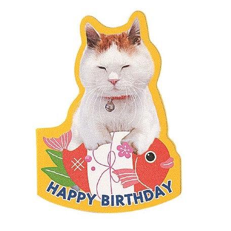 日本Gakken Napping Cat 生日彈出卡 Birthday card