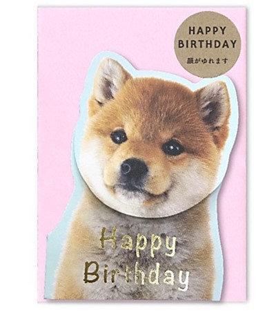 日本Shiba Dog Birthday 搖頭生日card