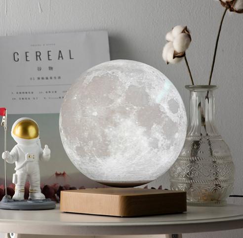 moonlight 14.jpg