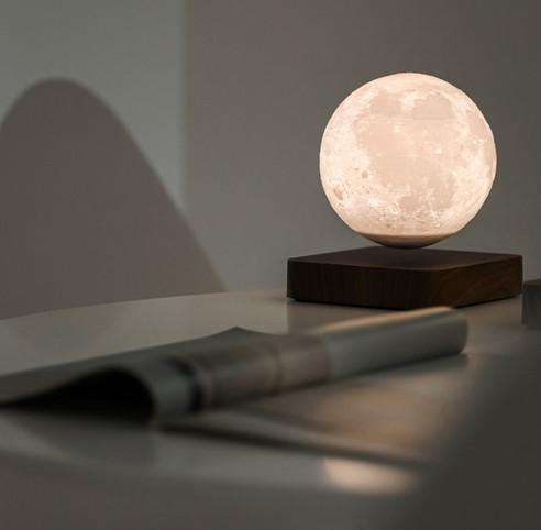 moonlight 4.jpg