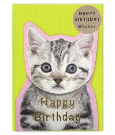 日本Spring Cat Birthday 搖頭生日card(灰喵)
