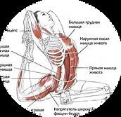 курсы йоги в Перми