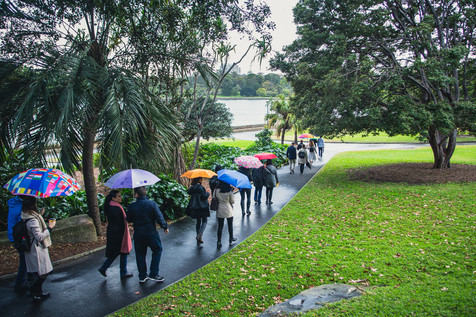 Networking In Nature, Botanical Gardens, Sydney