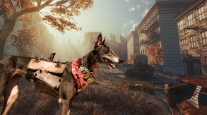 Dogmeat_in_Flalout.jpg