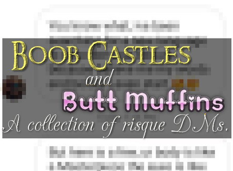 'Boob Castles and butt muffins' a collection of risque dms