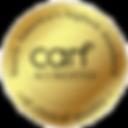 carf-logo_1__edited.png
