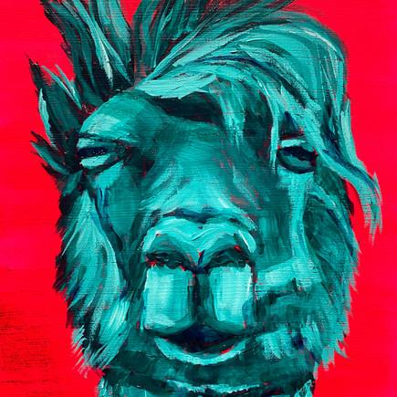 Artist Llama