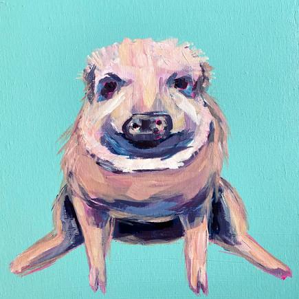 A good pig